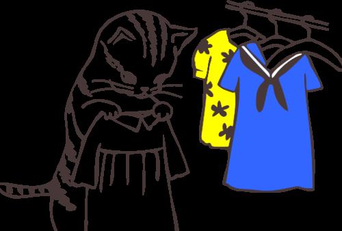 子猫が服を選ぶ画像
